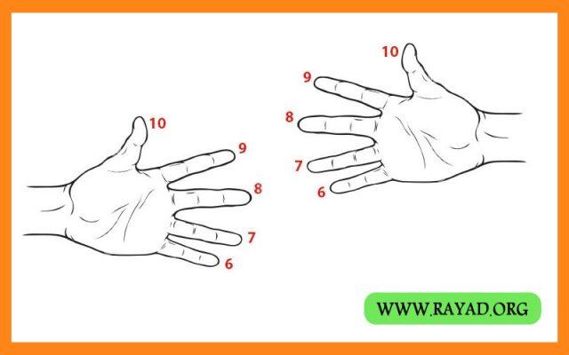 دو انگشت مقابل هم